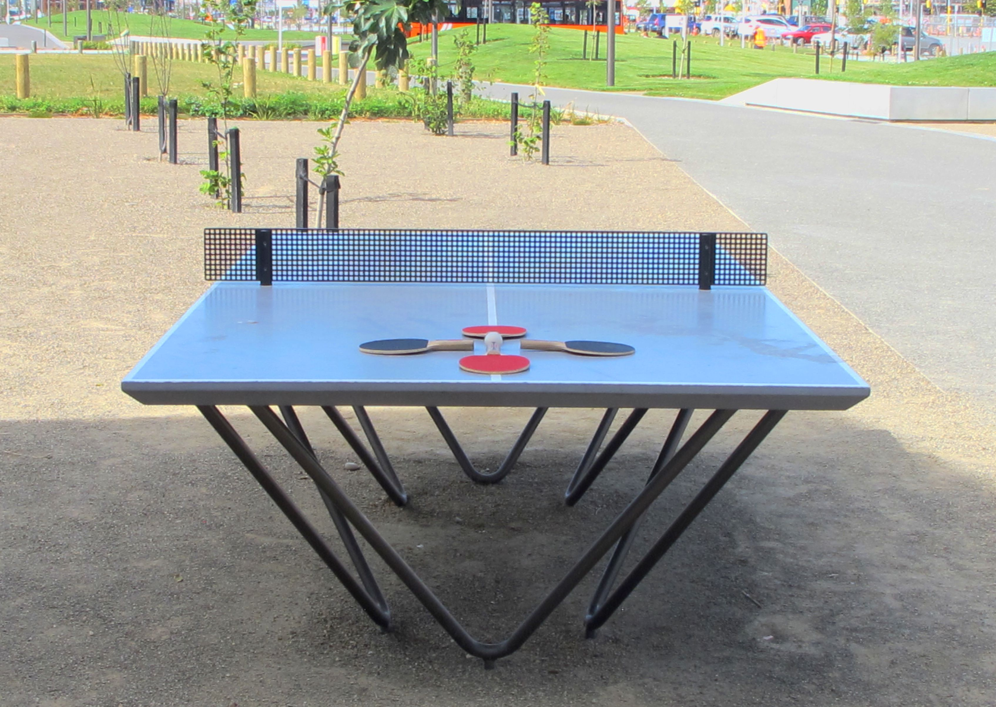 Ping Pong Table Rauora Park